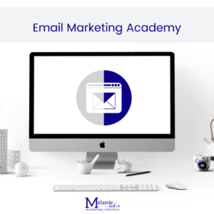 Email Marketing Academy online course