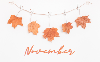 Your November content planner is here
